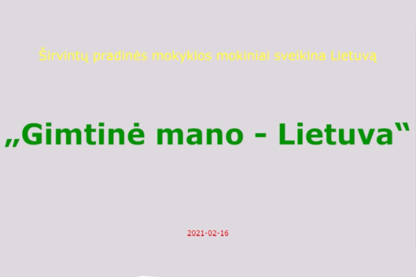 Šventėme Lietuvą!